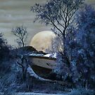 March Moon Rising by missmoneypenny