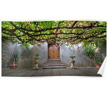 Beneath The Vines Poster