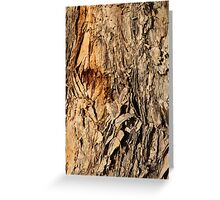 Bark Textures, 6 Greeting Card