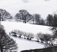 Winter landscape Wales UK by sloweater