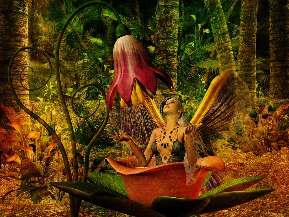 Where Fairies Hide by Pamela Phelps