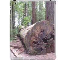 Avenue of the Giants 2 iPad Case/Skin