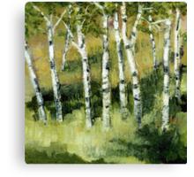 Birches on a Hillside Canvas Print