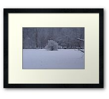 Snow on the Ground Framed Print