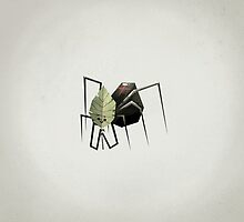 The Non-Menacing Spider by scarriebarrie