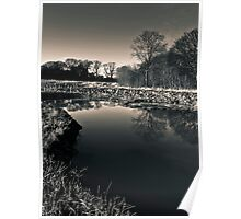 Betty's Wood Landscape 2 Poster