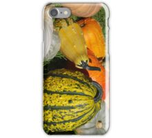 iPhone case Landis Valley Museum Pumpkins iPhone Case/Skin