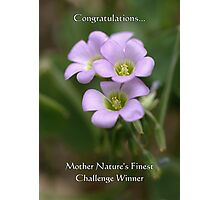 Challenge Winner Banner for Mother Nature's Finest! Photographic Print