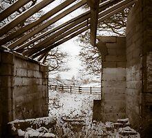 Derelict by Sarah Walters