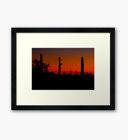 Cacti in the Red Framed Print