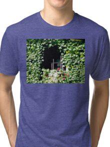 Fairytale Window Tri-blend T-Shirt