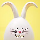 White Easter Bunny Rabbit On Yellow by Andrea Hurley