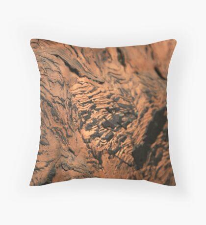 Copper Throw Pillow
