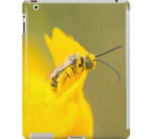 Eucerini  iPad Case/Skin