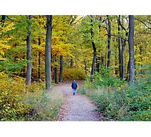 Walk In The Wood Photographic Print