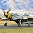 P51 Mustang by Pete  Burton