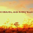 Pilbara Bush by Greyman