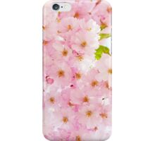 Lovely pink cherry bloom. iPhone Case/Skin