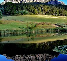 Mount Roland Reflection by gmws