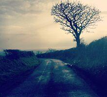 Recluse by Emily Jane Dixon