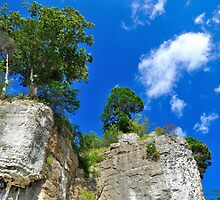 Cave-in-Rock Bluffs by michaelasamples