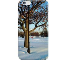 A winter scene iPhone Case/Skin