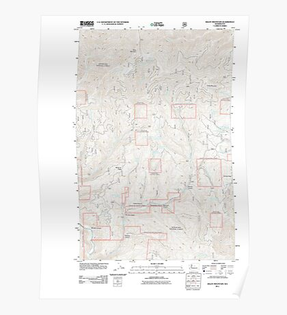 USGS Topo Map Washington State WA Baldy Mountain 20110606 TM Poster