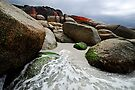 Outgoing Tide - Bay of Fires by Barbara Burkhardt
