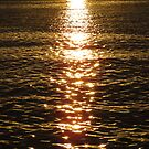 Sun trail on the water by Jackson  McCarthy