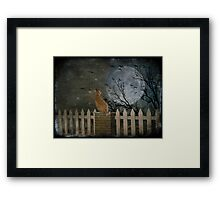 The year of the cat Framed Print