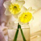 Two Daffodils by Lynn Starner