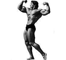 Arnold, The Legend Photographic Print
