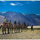Sand Dunes of Hunder by RajeevKashyap