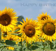 Happy Birthday by Karen Havenaar