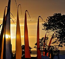 Flag End of the Day, Lynmouth by ColinKemp
