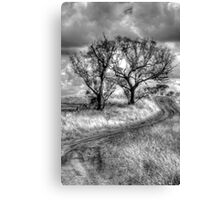 Monochrome Dreams - Cootamundra, NSW - The HDR Experience Canvas Print