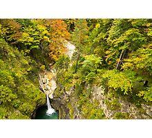 Neuschwanstein Waterfall Photographic Print