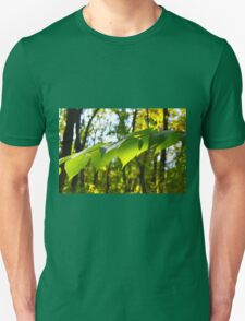 Selective focus on the branch of a tree T-Shirt