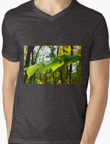 Selective focus on the branch of a tree Mens V-Neck T-Shirt