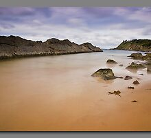 Forster Rocks by kevin chippindall