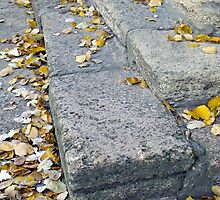 Side view of the steps of the old gray stone blocks by vladromensky