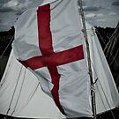 Flag by Paul Benjamin