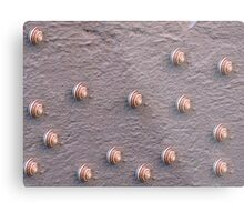 Wall of Snails Metal Print