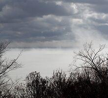 Fog Lifting off the Ottawa River by Debbie Pinard
