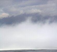 Fog on the River, Springtime in Dunrobin by Debbie Pinard