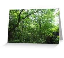 A Hit of Green Greeting Card