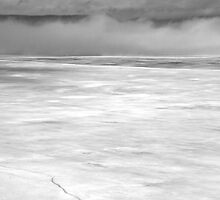 Foggy Morning in Black and White, Ottawa River, Dunrobin Ontario by Debbie Pinard