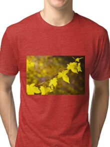 Little branch of maple with yellow leaves close up Tri-blend T-Shirt