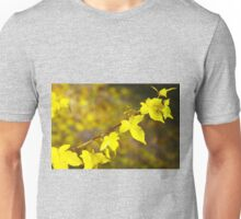 Little branch of maple with yellow leaves close up Unisex T-Shirt