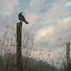 Storm Watch by Karen Ilari